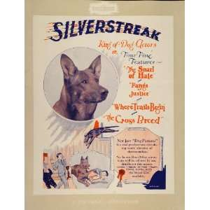 Dog Silverstreak German Shepherd   Original Print Ad