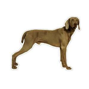 WEIMARANER   Dog Decal   sticker car got window