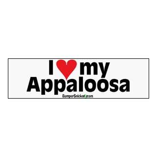 Love My Appaloosa   bumper stickers (Medium 10x2.8 in.) Automotive